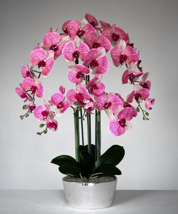 Unique Flora Flowers